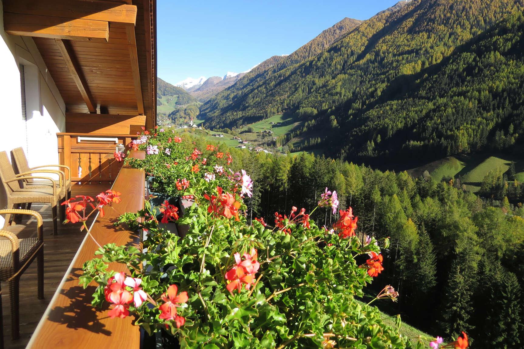 Alpenrose Ausblick Herbst 01