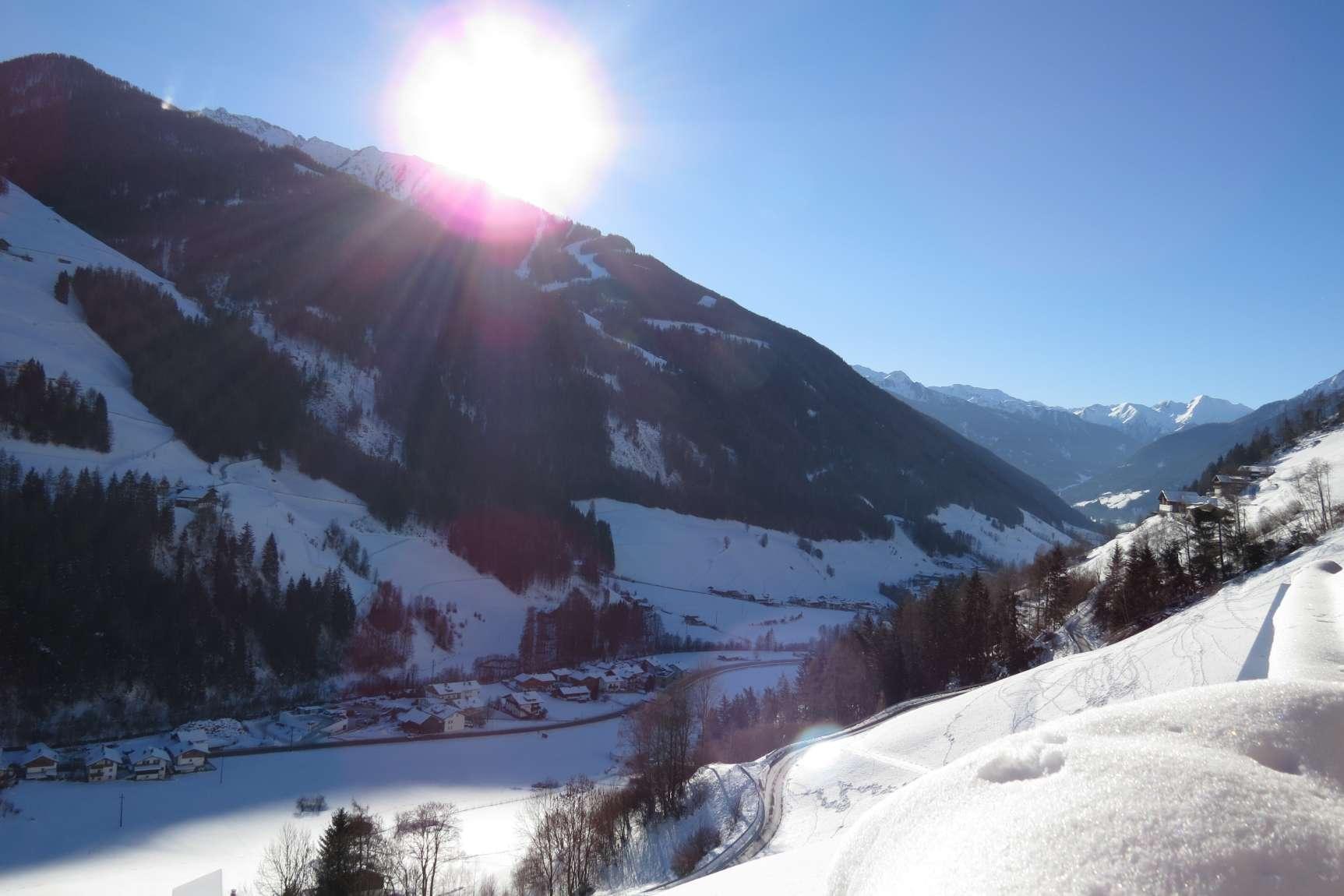 Alpenrose Ausblick 01